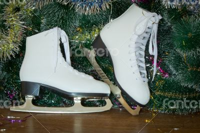 Gift for New year and Christmas - womens skates with beautiful w