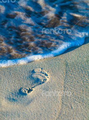 Footprints on a Caribbean beach 3