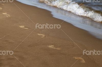 Footprints along the shore