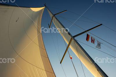sail in the evening sun