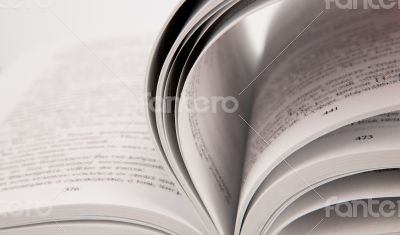 Pages of the book