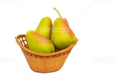 Large ripe pears in a wicker basket on a white background.