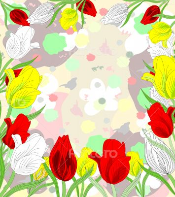 Beautiful red, white and yellow tulips blooming on an abstract b