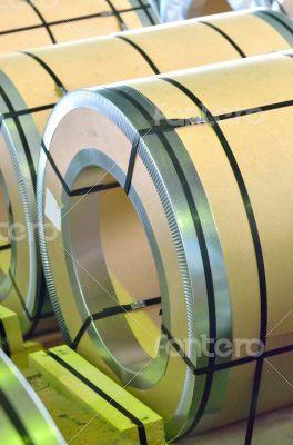 sheel rolls