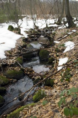 River bank and in clear water of stream. Winter is beginning at