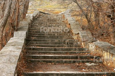 Old stone stairs leading up in autumn park