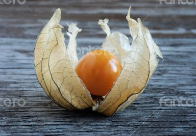 Physalis, lying on a wooden surface