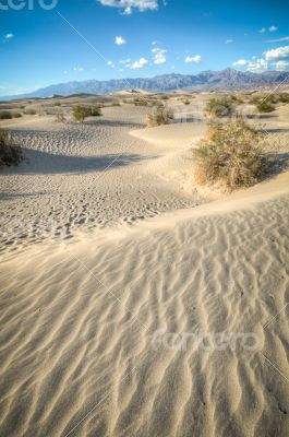Death Valley natural sand dunes