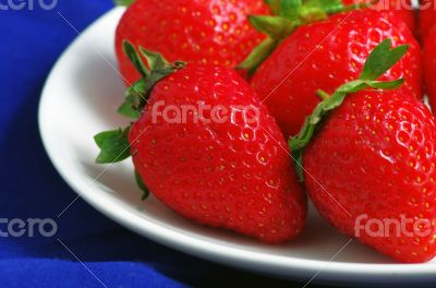 Healthy red strawberry fruit  isolated on the blue background