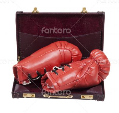 Boxing Gloves in a Briefcase