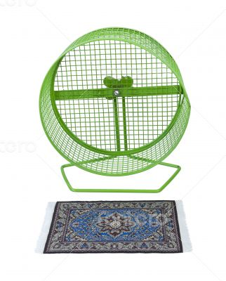 Colorful Rug in Front of Exercise Wheel