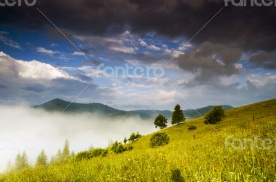 evening mountain plateau landscape (Carpathian, Ukraine)