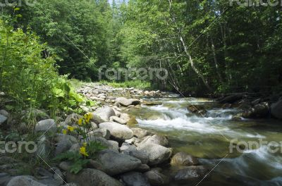 mountain river. Beauty wild nature landscape