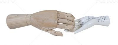 Wooden Hand and Palm Reading Model