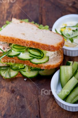 fresh vegetarian sandwich with garlic cheese dip salad