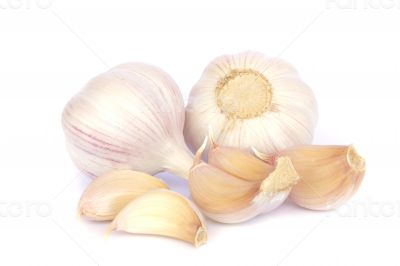Garlic bulb and cloves on white background