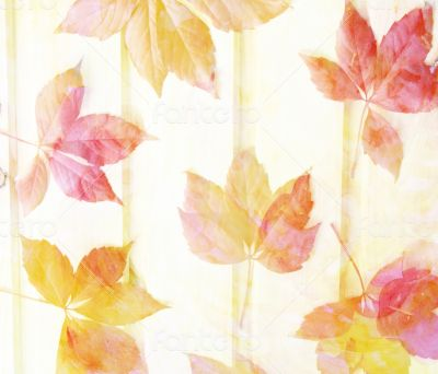 Scenic abstract background with leaves