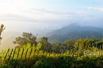 Viewpoint Doi Ang Khang mountains in Chiang Mai province of Thai