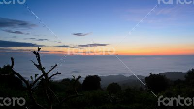 Landscape sea of mist on sunrise view from high mountain