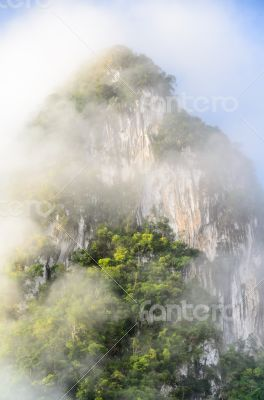 Lush high mountains covered by mist