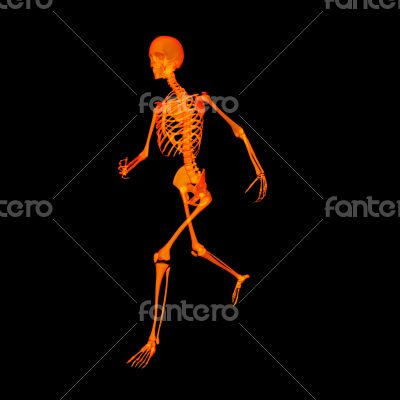 walking fire skeleton by X-rays in red