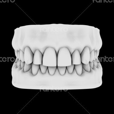 White teeth isolated on black background