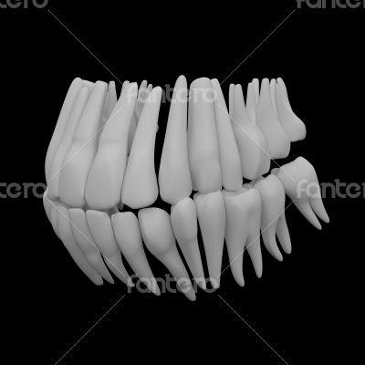 3d human red teeth