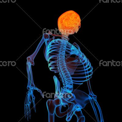 3d rendered human of head pain - bottom view
