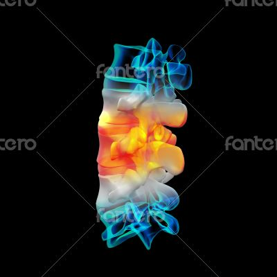 Human with the backbone