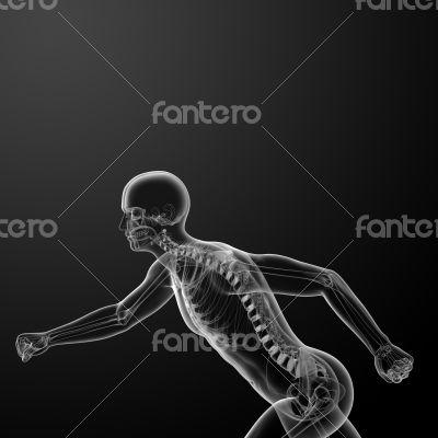 Running skeleton by X-rays
