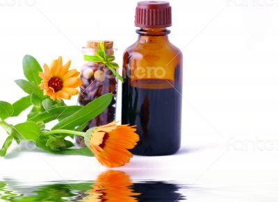 Herbal medicine with herbs with place gor text. Isolated white b