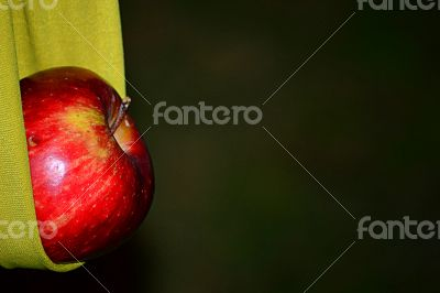 Apple in the cloth