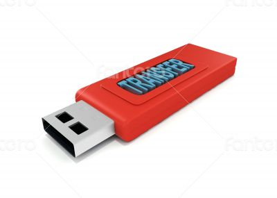 3d usb drive that contains word transfer