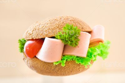 sandwich with brown bread