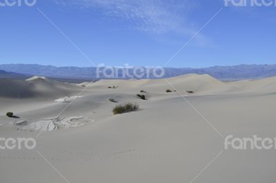 Sandy dunes in the Death Valley
