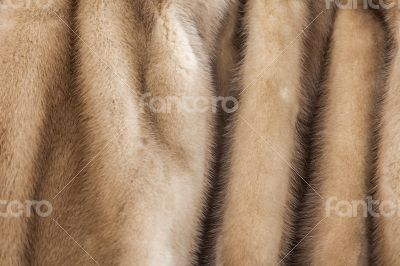 Product from fur of a mink