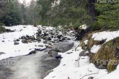 Flowing water of Carpathian mountain stream