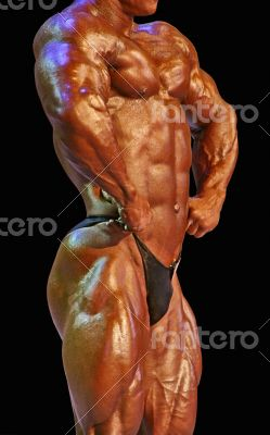 isolated muscular male torso