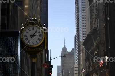 Checking the time on the 5th avenue
