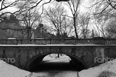 Bridge in Central Park under the Snow