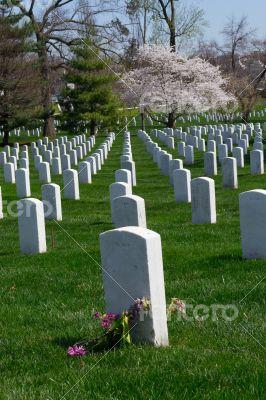 Arlington Cemetery tumb