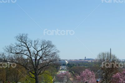DC from Arlington Cemetery