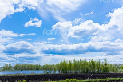 Summer landscape with sky and forest