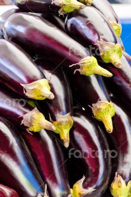 Background with fresh eggplant