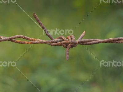 rust wire