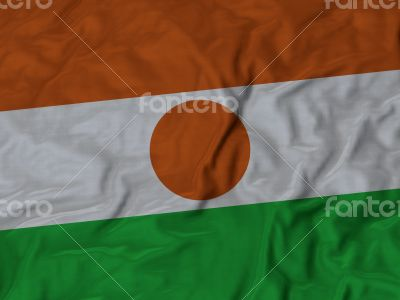 Close up of Ruffled Niger flag