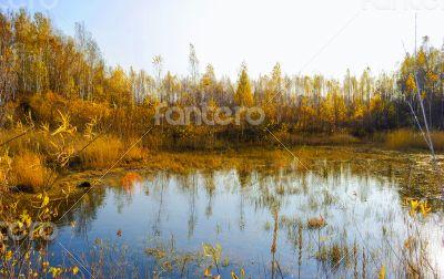 Pure lake