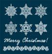 Unique snowflakes / vector / christmas background