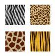 animal skins patterns