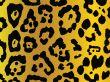 leopard stile background